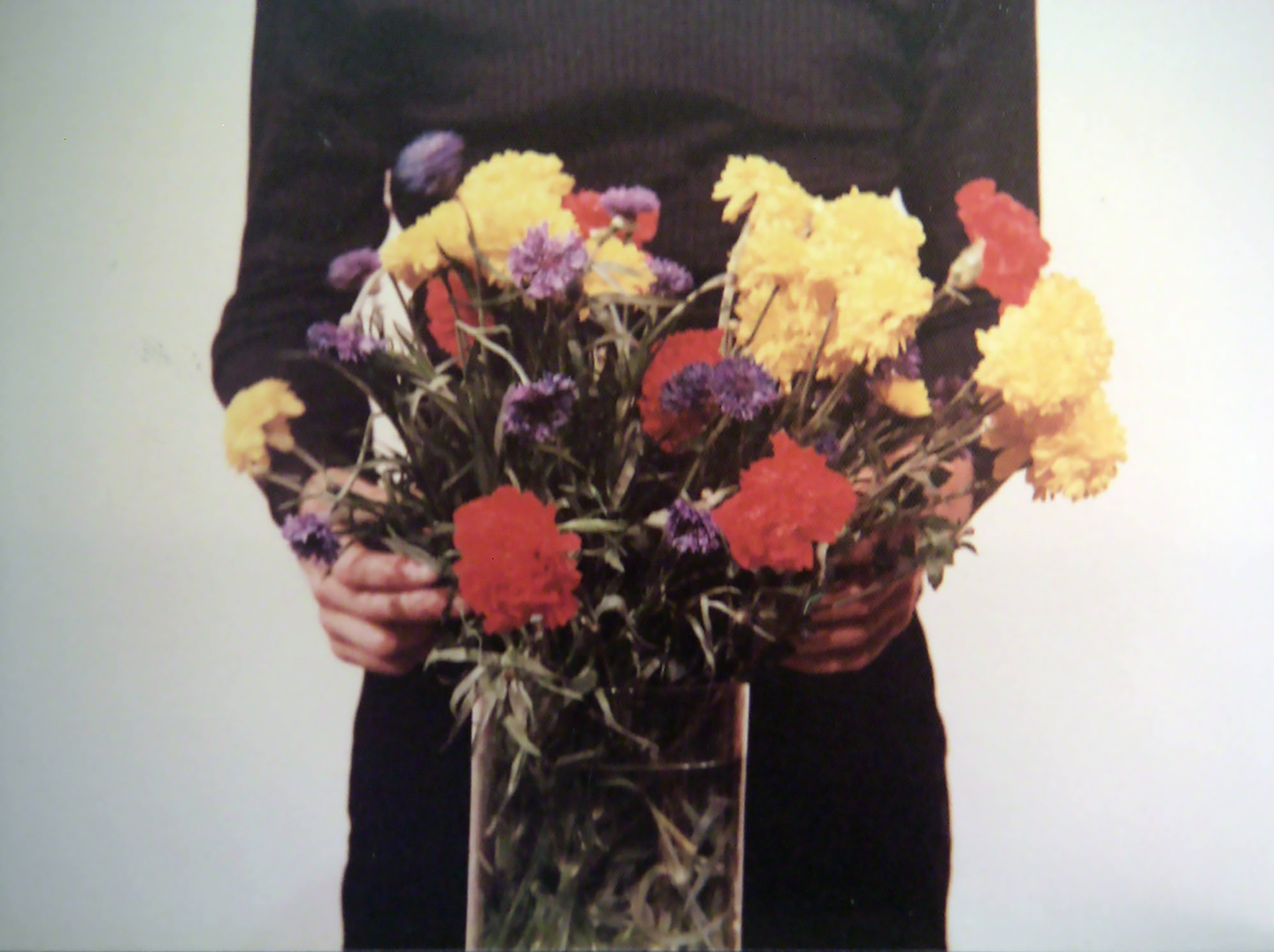 floral patterns an essay about flowers and art a blooming  bas jan ader primary time still 1974 © estate of bas