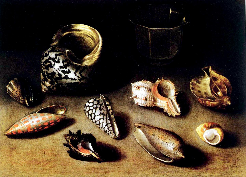 Clara Peters, Neuf coquillages exotiques, XVII century