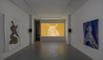 Courtesy: the artist and ALMANAC, London / Turin. Photo: Sebastiano Pellion