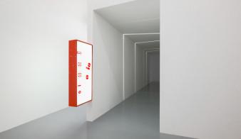 "Gina Proenza ""Agarra-diablo"" at CAN Centre d'art Neuchâtel, Neuchâtel, 2020"