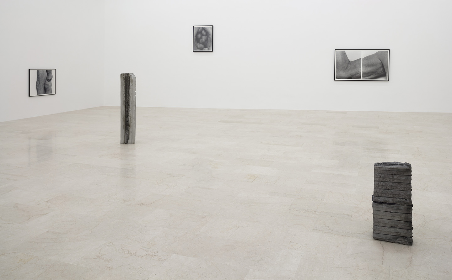 John Coplans And June Crespo Foreign Bodies At P420 Bologna  # Muebles Badiola